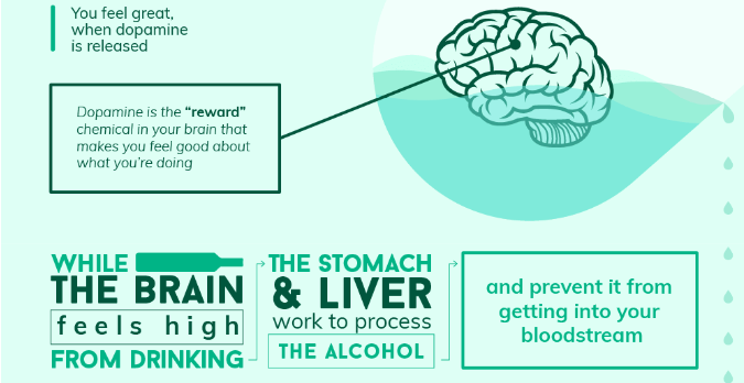 what happens when you get drunk - infographic